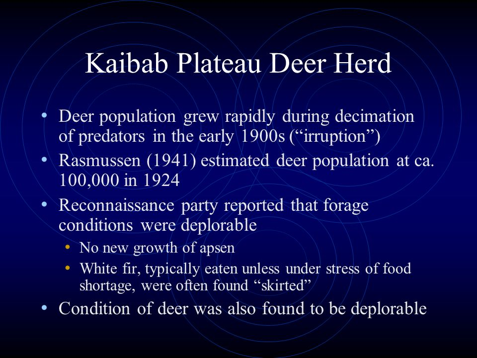 Kaibab Plateau Deer Herd