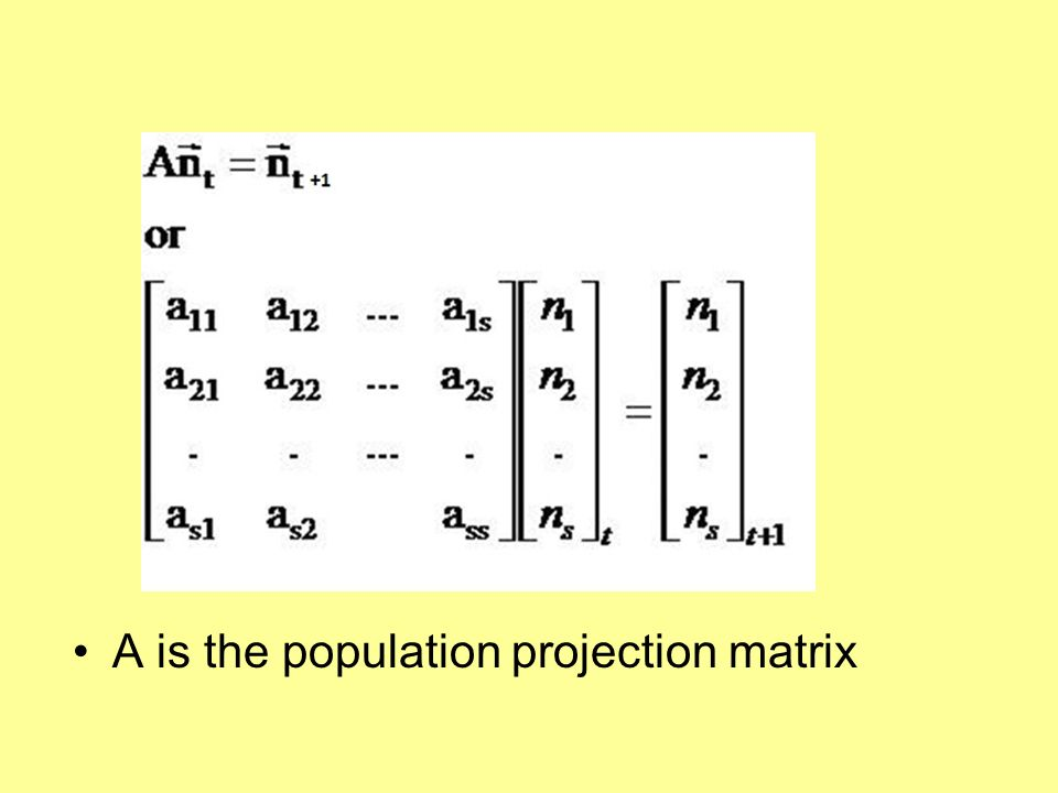 A is the population projection matrix