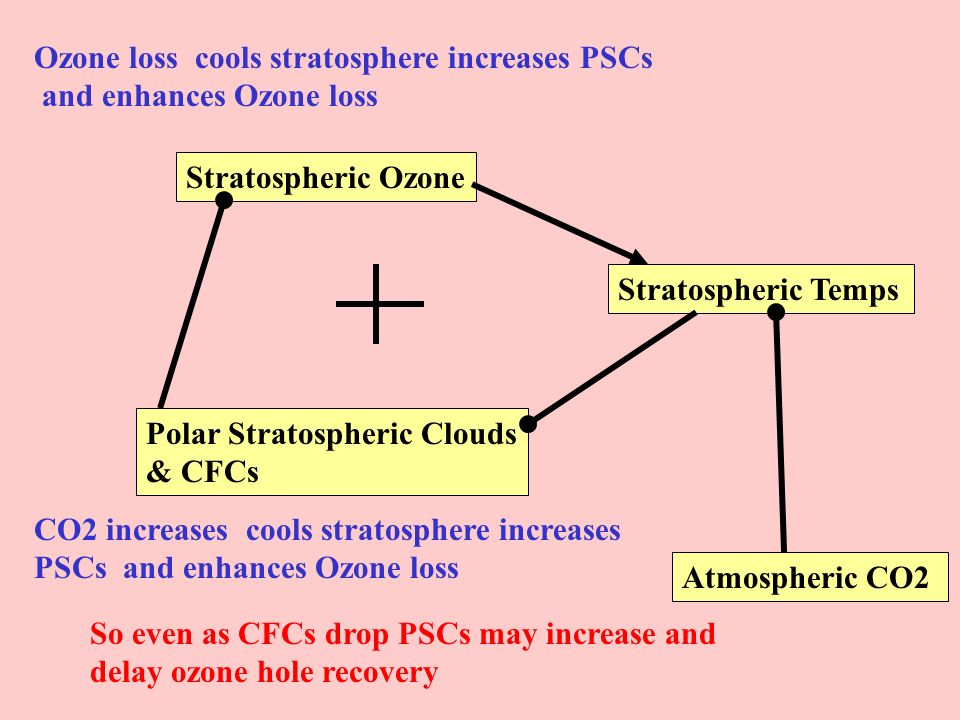Ozone loss cools stratosphere increases PSCs and enhances Ozone loss