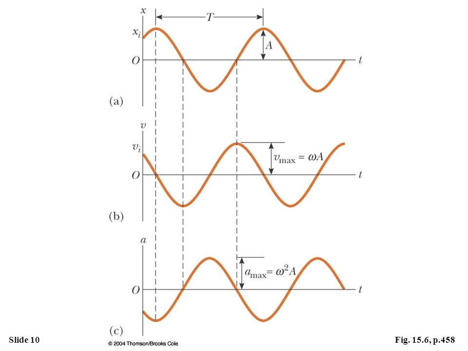 Figure 15. 6 Graphical representation of simple harmonic motion