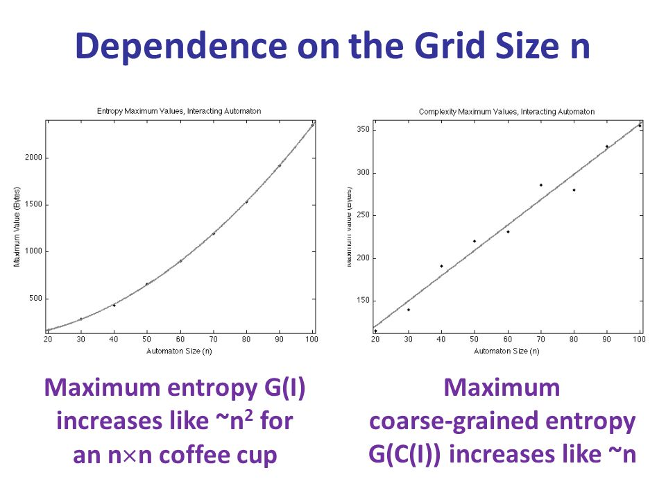 Dependence on the Grid Size n