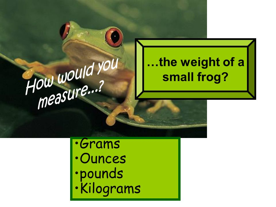 Grams Ounces pounds Kilograms …the weight of a small frog