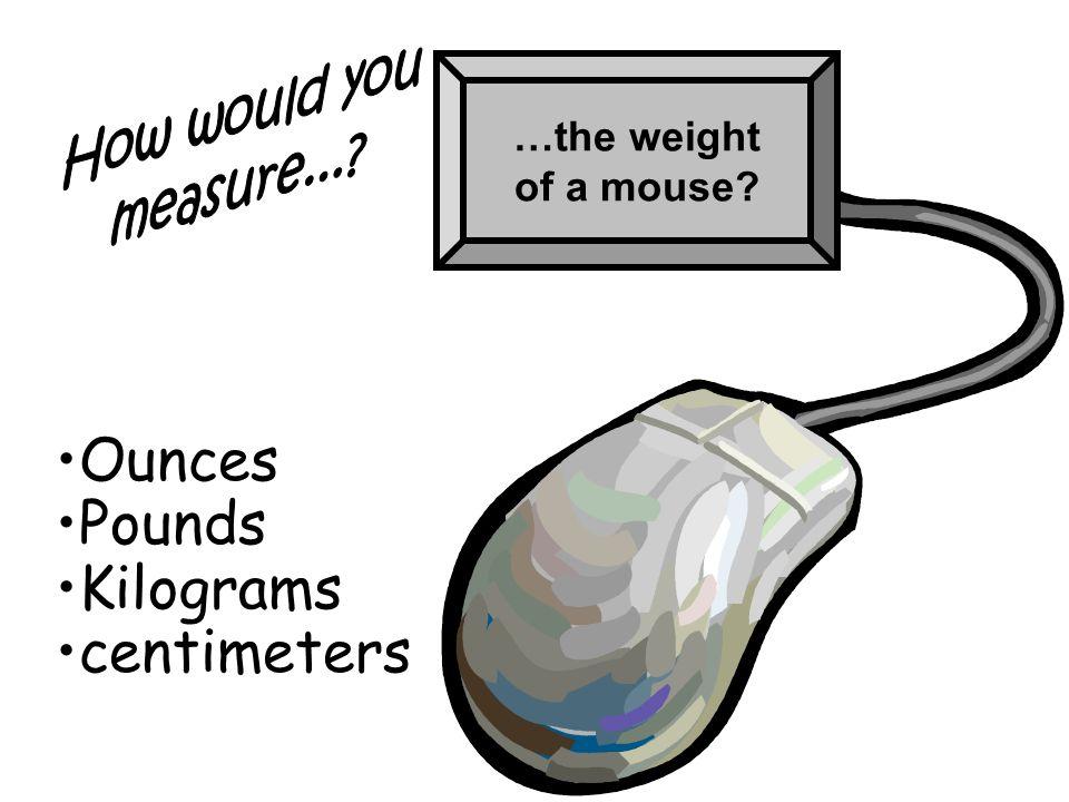 Ounces Pounds Kilograms centimeters How would you measure...