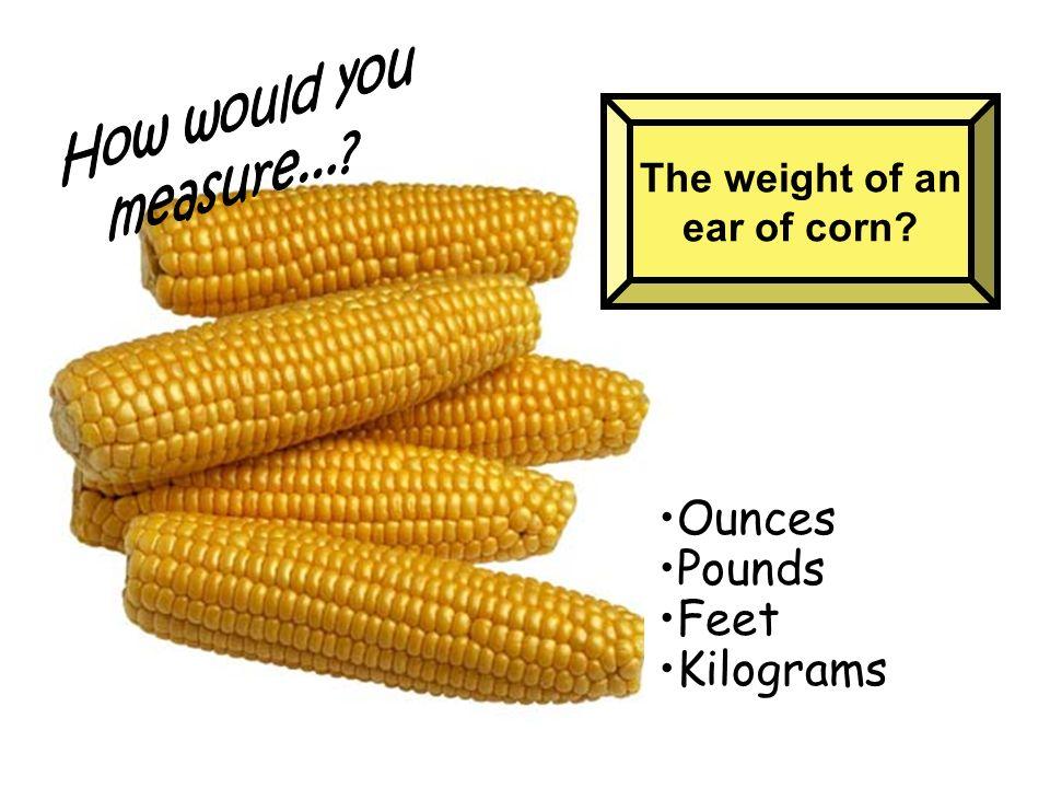 Ounces Pounds Feet Kilograms How would you measure...