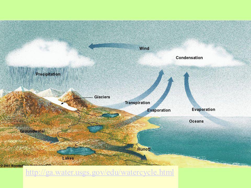 http://ga.water.usgs.gov/edu/watercycle.html