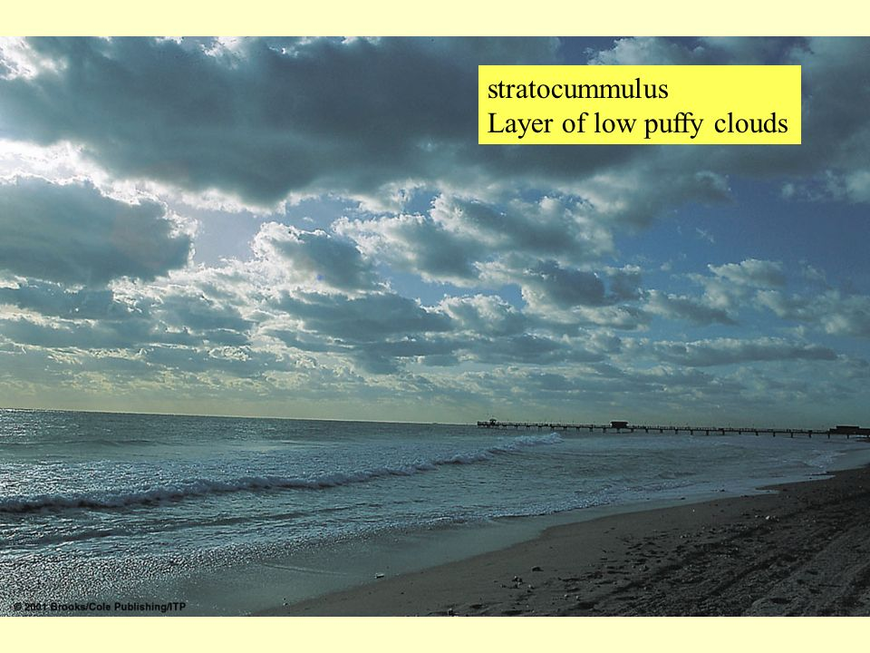stratocummulus Layer of low puffy clouds