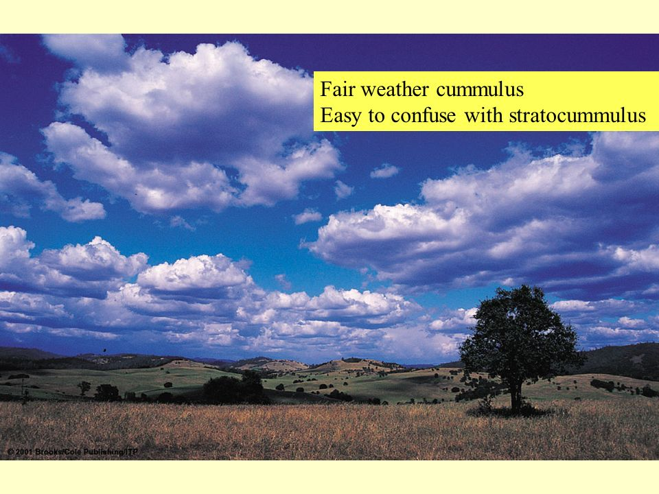 Fair weather cummulus Easy to confuse with stratocummulus