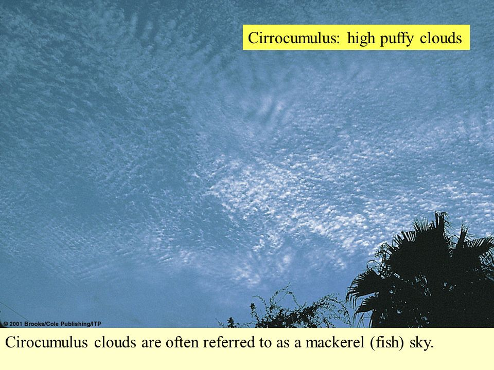 Cirrocumulus: high puffy clouds