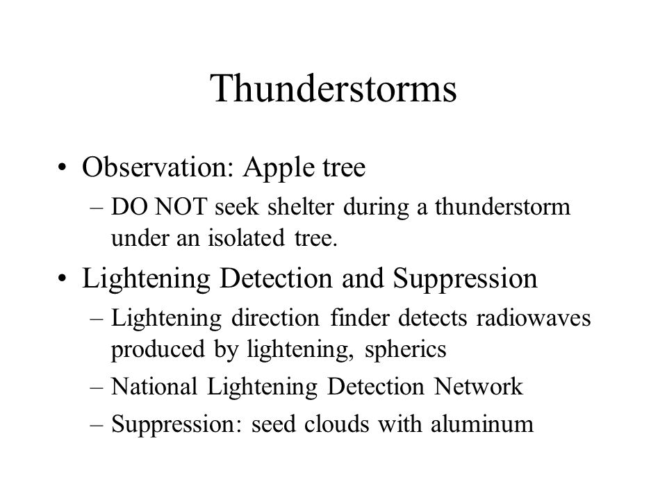 Thunderstorms Observation: Apple tree