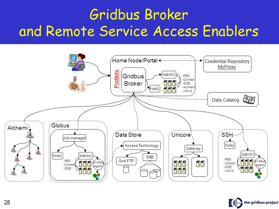 Gridbus Broker and Remote Service Access Enablers