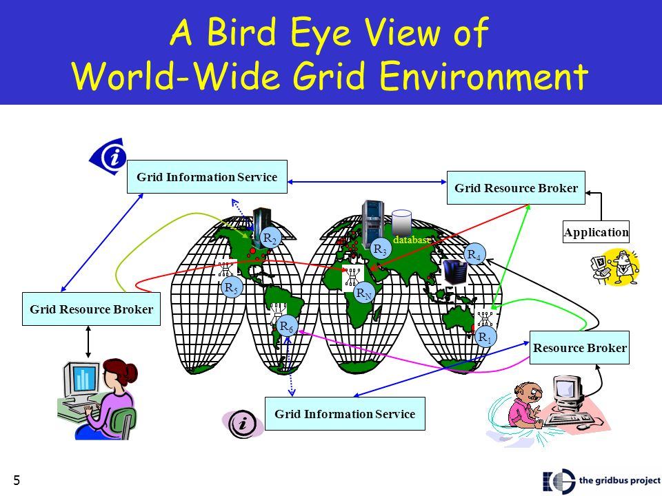A Bird Eye View of World-Wide Grid Environment