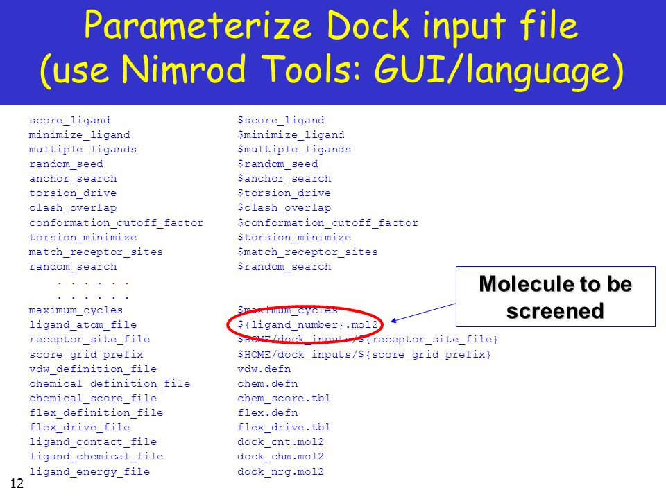 Parameterize Dock input file (use Nimrod Tools: GUI/language)