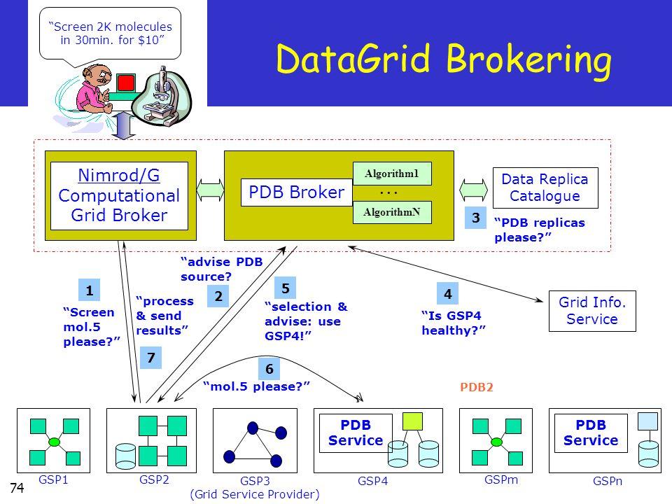 DataGrid Brokering Nimrod/G Computational PDB Broker Grid Broker
