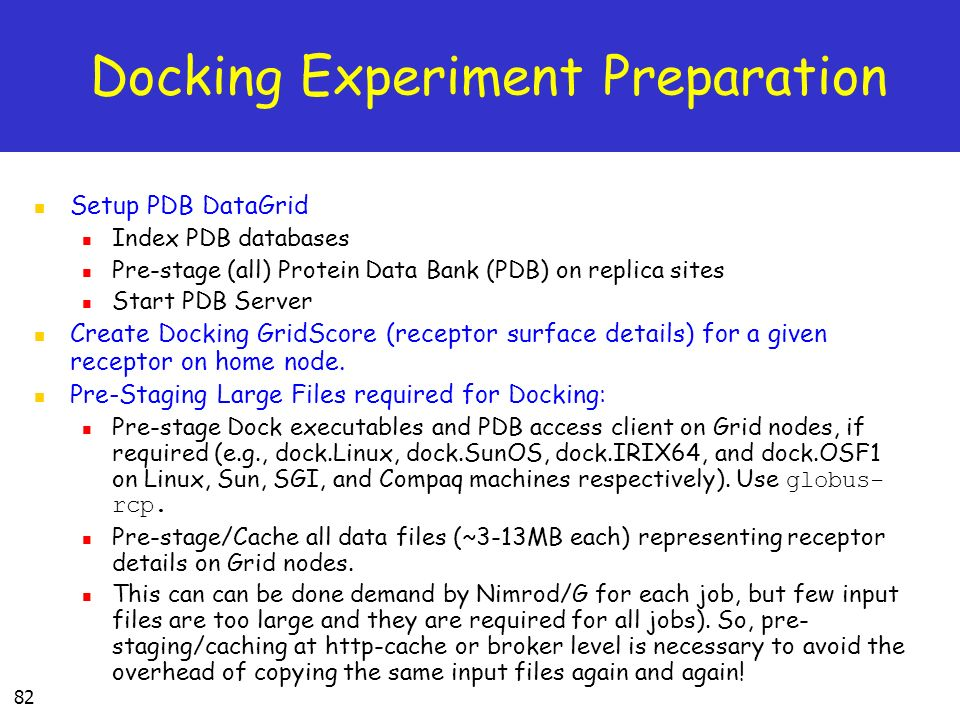 Docking Experiment Preparation