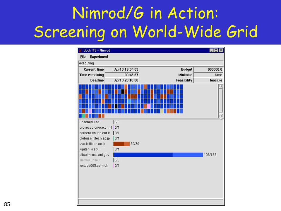 Nimrod/G in Action: Screening on World-Wide Grid