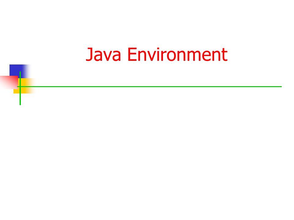 Java Environment