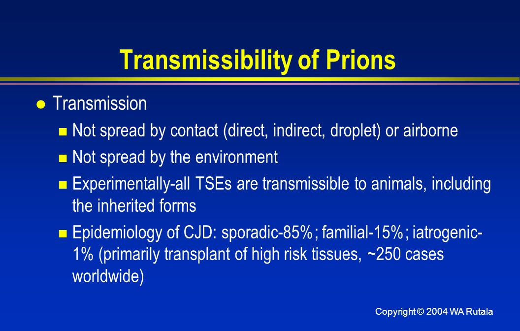 Transmissibility of Prions