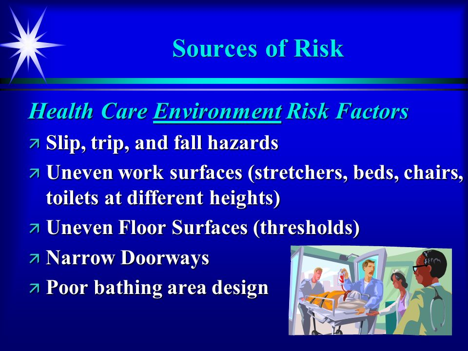 Sources of Risk Health Care Environment Risk Factors