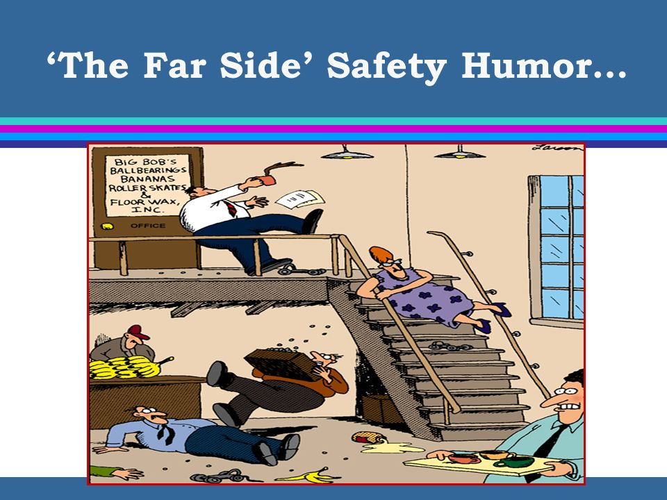 'The Far Side' Safety Humor…