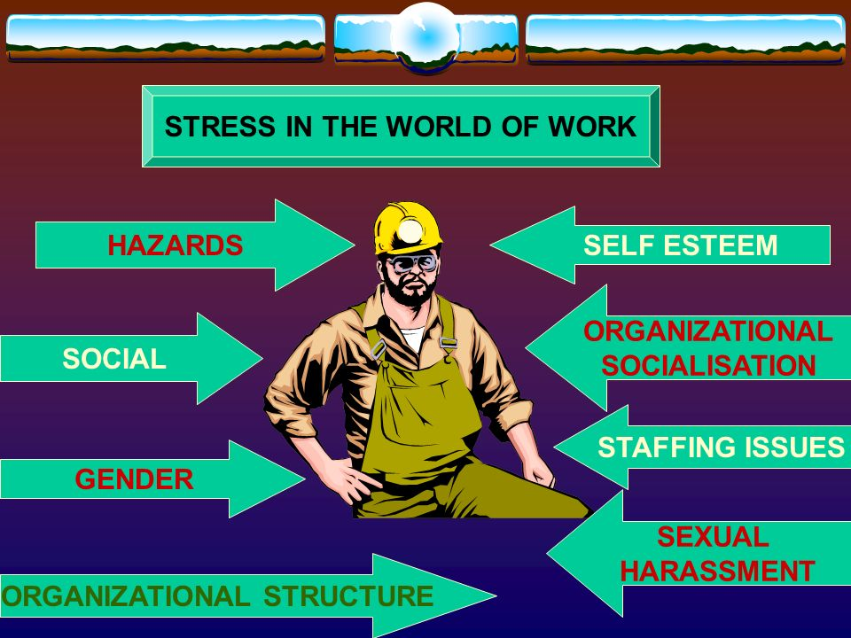STRESS IN THE WORLD OF WORK ORGANIZATIONAL STRUCTURE