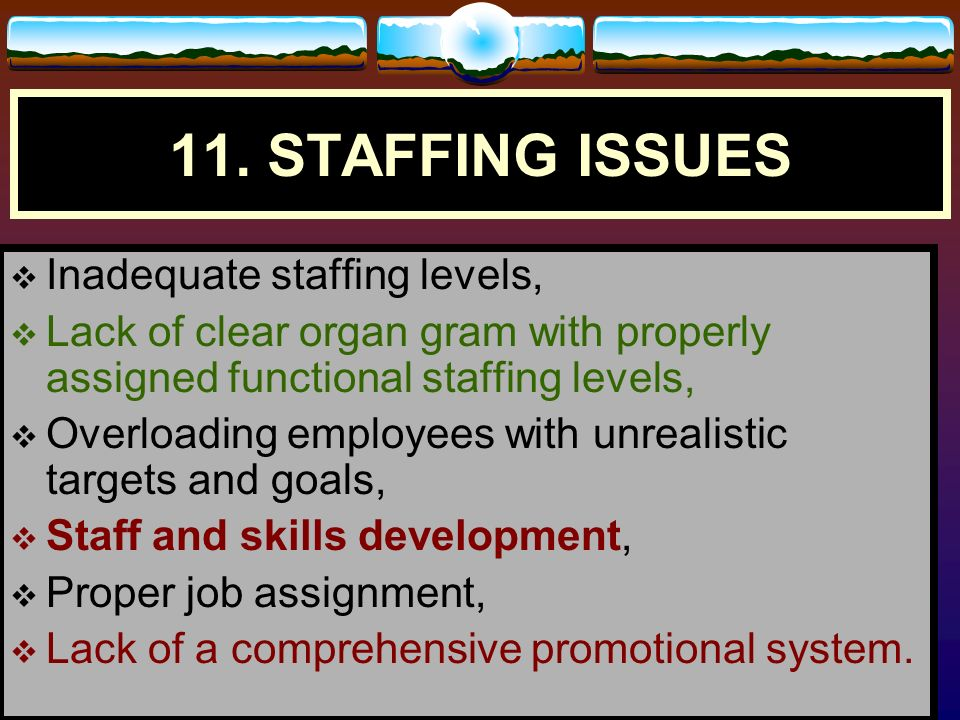 11. STAFFING ISSUES Inadequate staffing levels,