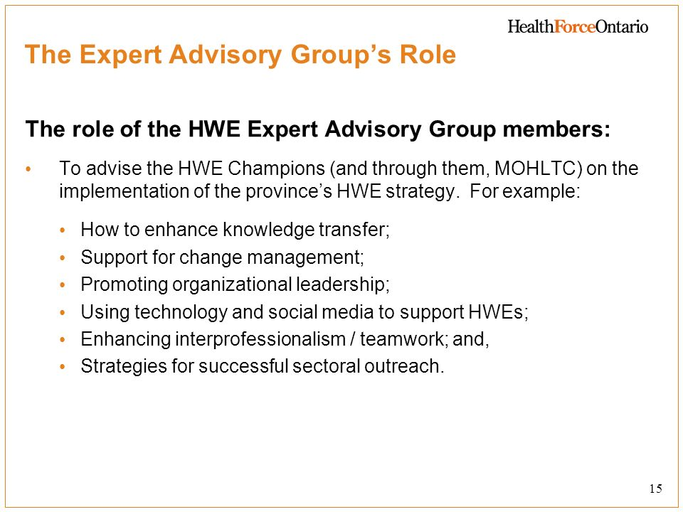 The Expert Advisory Group's Role