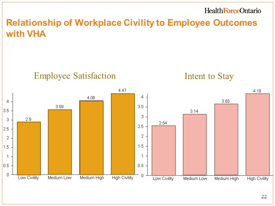 Relationship of Workplace Civility to Employee Outcomes with VHA