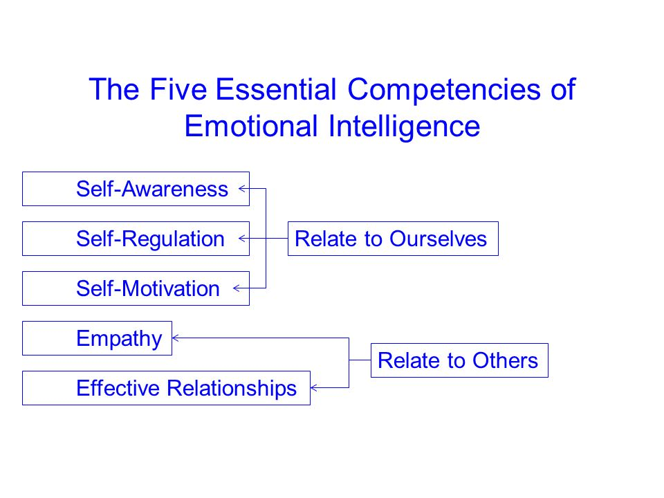 The Five Essential Competencies of Emotional Intelligence
