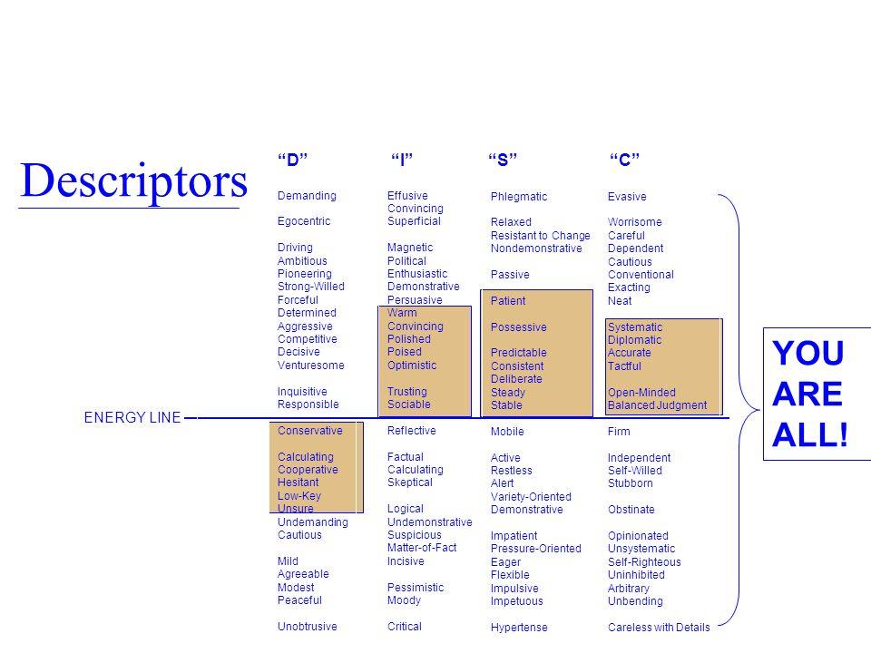 Descriptors YOU ARE ALL! D I S C ENERGY LINE