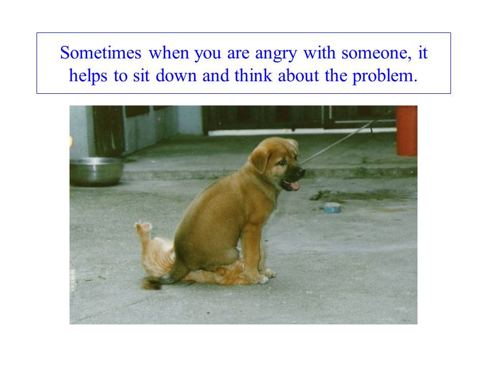 Sometimes when you are angry with someone, it helps to sit down and think about the problem.