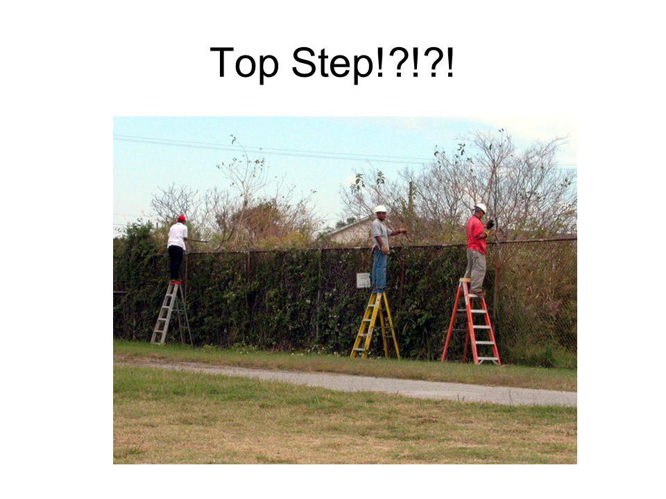 Top Step! ! !