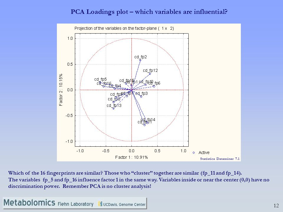 PCA Loadings plot – which variables are influential