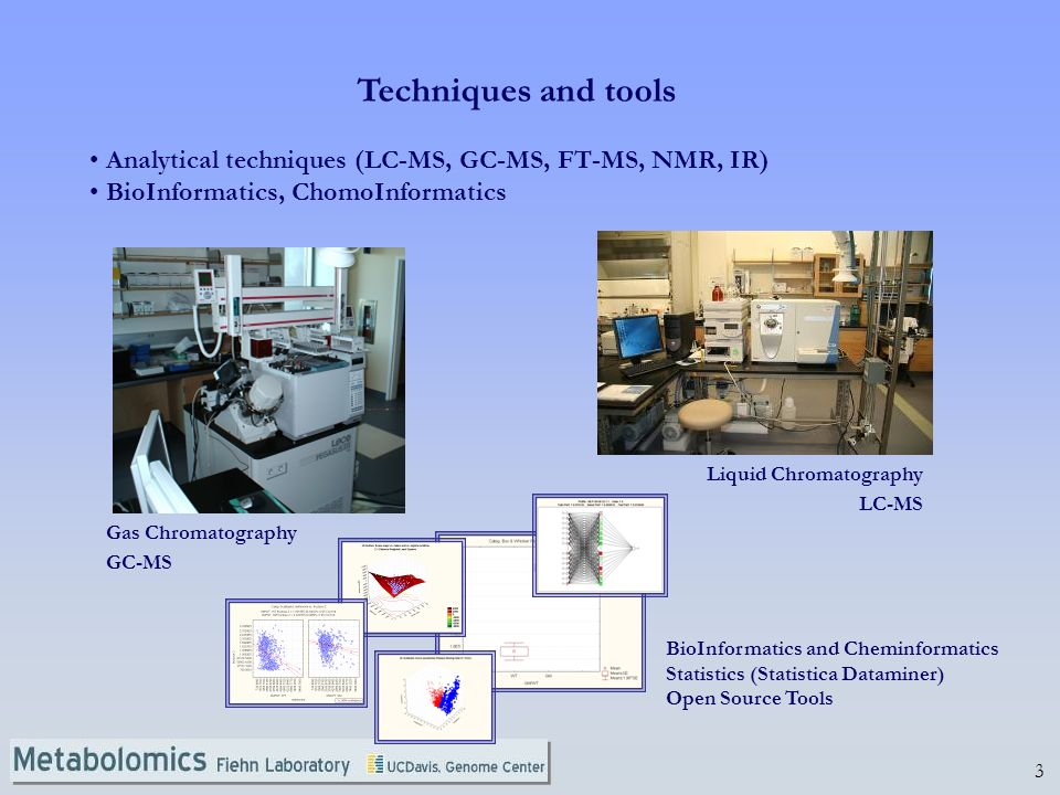 Techniques and tools Analytical techniques (LC-MS, GC-MS, FT-MS, NMR, IR) BioInformatics, ChomoInformatics.