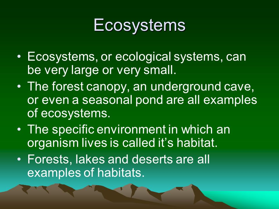 Ecosystems Ecosystems, or ecological systems, can be very large or very small.