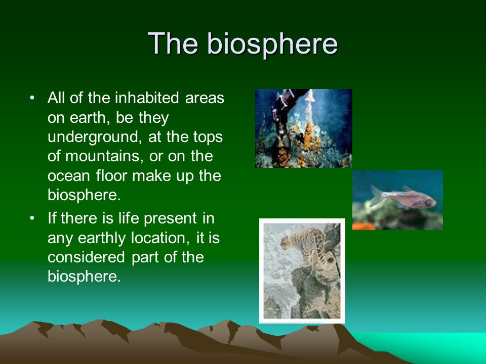 The biosphere All of the inhabited areas on earth, be they underground, at the tops of mountains, or on the ocean floor make up the biosphere.