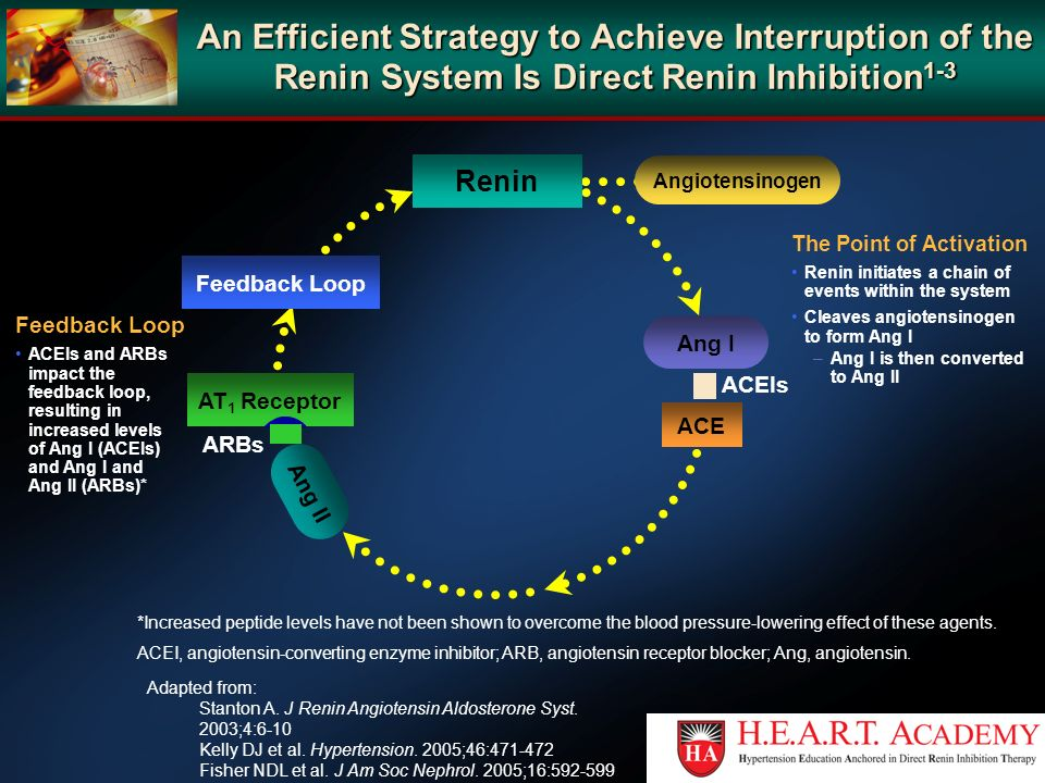 An Efficient Strategy to Achieve Interruption of the Renin System Is Direct Renin Inhibition1-3