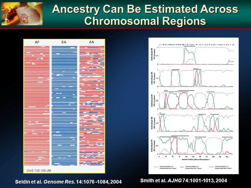 Ancestry Can Be Estimated Across Chromosomal Regions