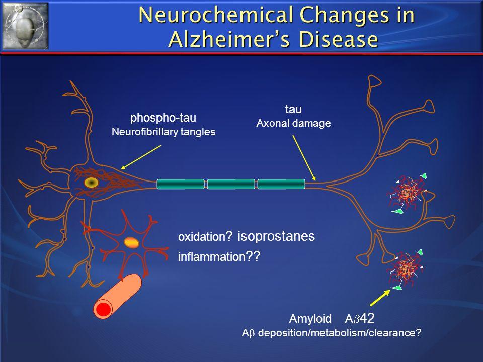 Neurochemical Changes in Alzheimer's Disease