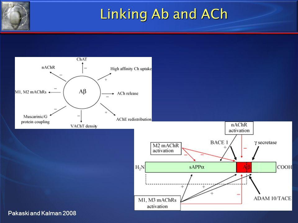 Linking Ab and ACh Pakaski and Kalman 2008