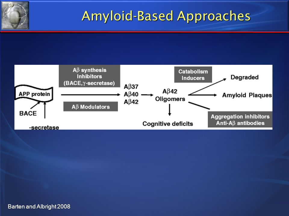 Amyloid-Based Approaches