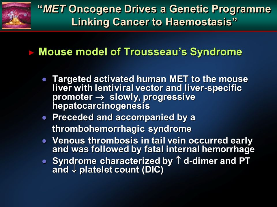 Mouse model of Trousseau's Syndrome