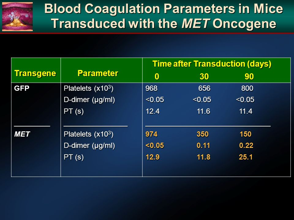 Blood Coagulation Parameters in Mice Transduced with the MET Oncogene
