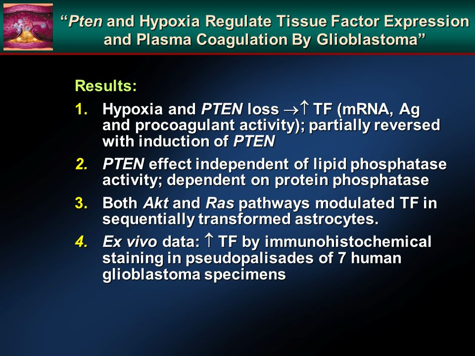 Pten and Hypoxia Regulate Tissue Factor Expression and Plasma Coagulation By Glioblastoma