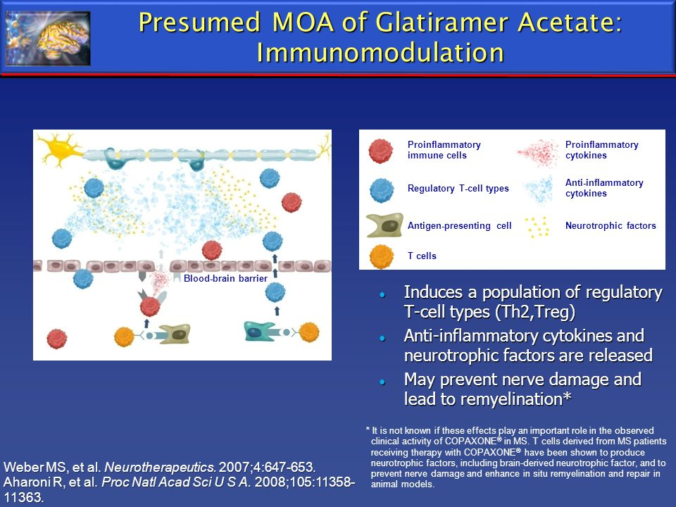 Presumed MOA of Glatiramer Acetate: Immunomodulation