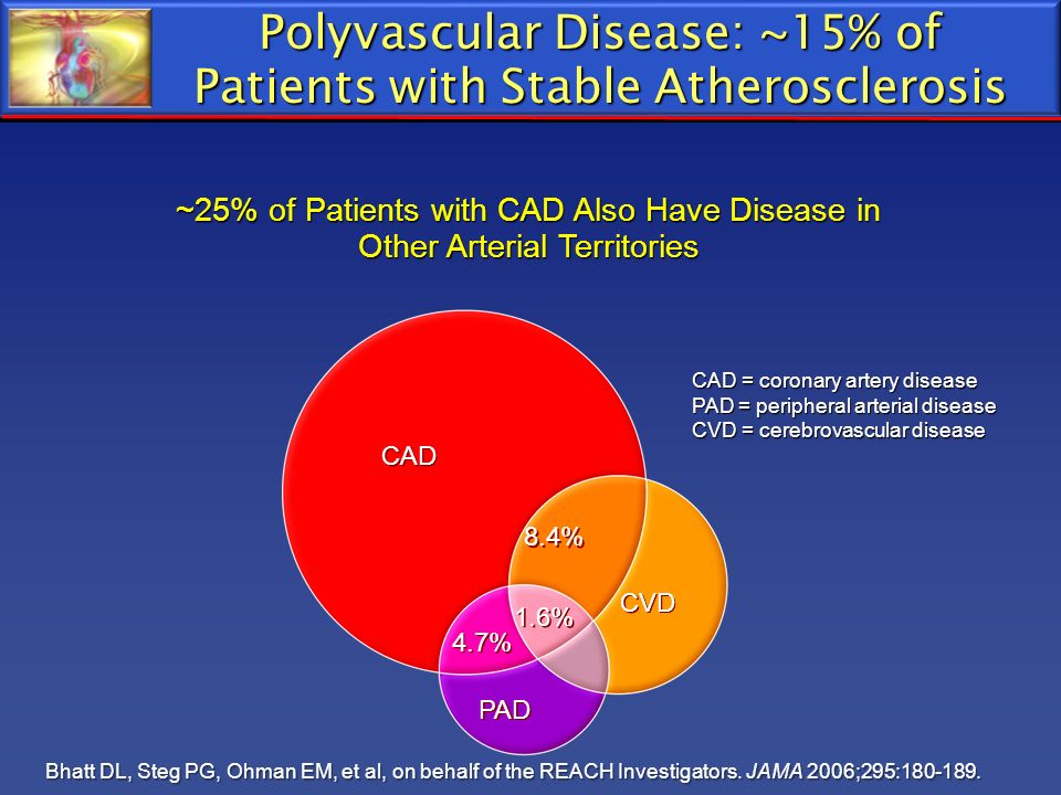 Polyvascular Disease: ~15% of Patients with Stable Atherosclerosis