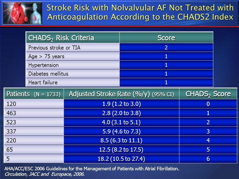 Adjusted Stroke Rate (%/y) (95% CI)