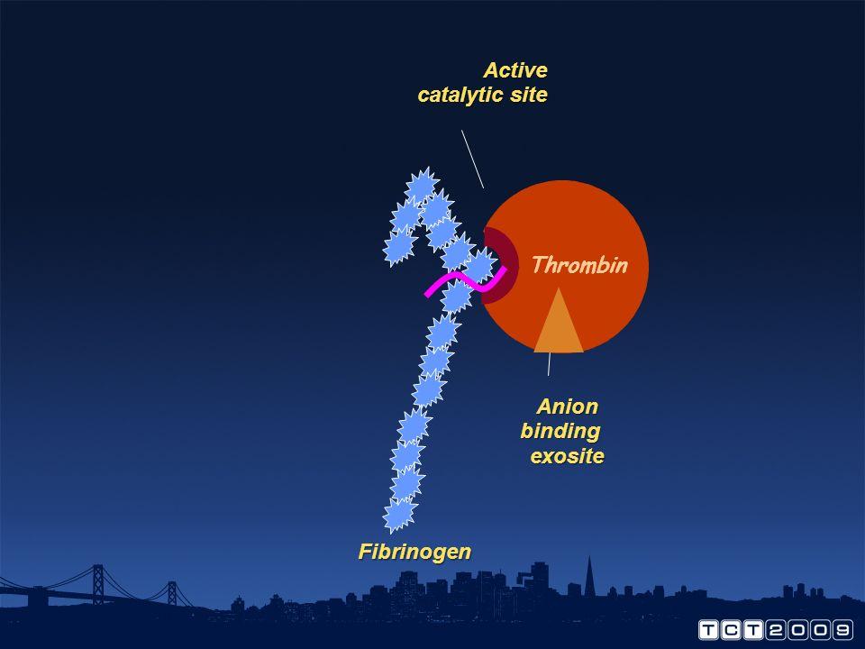 Active catalytic site Fibrinogen Thrombin Anion binding exosite