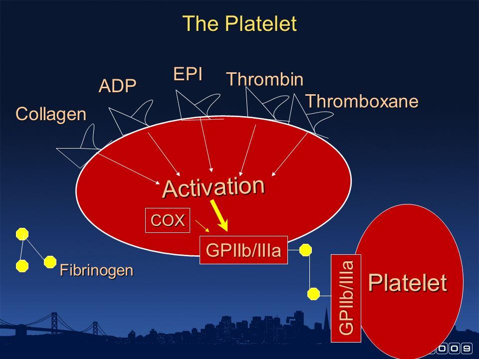 Activation Platelet The Platelet EPI Thrombin ADP Thromboxane Collagen