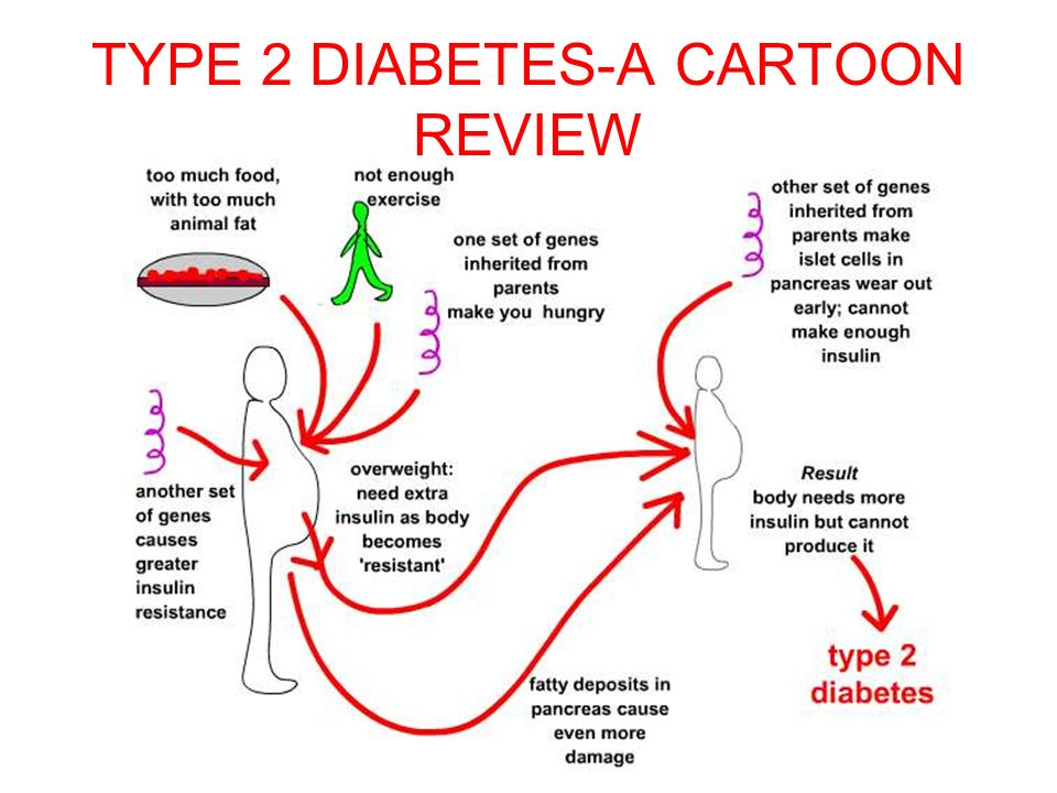 TYPE 2 DIABETES-A CARTOON REVIEW