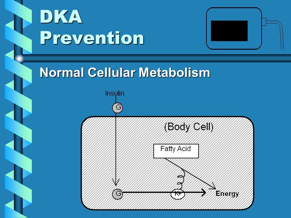 DKA Prevention Normal Cellular Metabolism